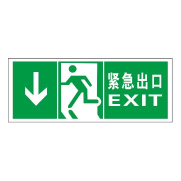 Luminous emergency evacuation signs-18-6