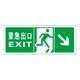 Luminous emergency evacuation signs-18-5