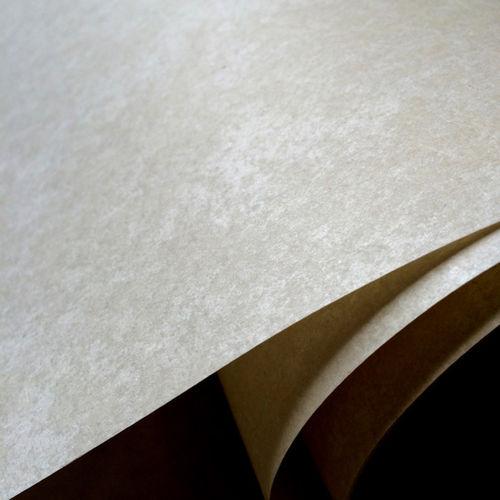 Aramid Insulation Paper-Aramid