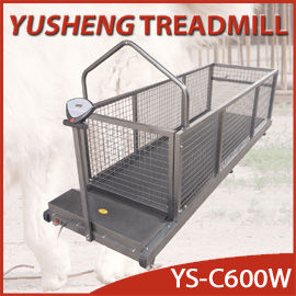 Pet Treadmill-YS-C600W