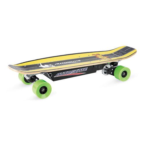 Electric skateboard-PM-600B