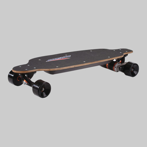 Electric Skateboard-PM-1600
