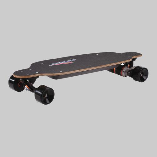 Electric Skateboard-PM-1600
