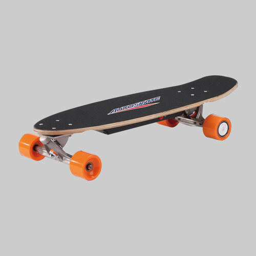 Electric Skateboard-PM-250