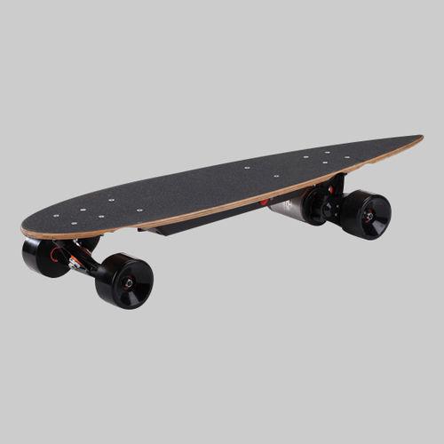 Electric Skateboard-PM-150