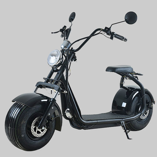 Electric Scooter-C01A